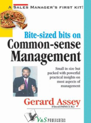 BITE SIZED BITS FOR COMMON SENSE MANAGEMENT - Read on ipad, iphone, smart phone and tablets.