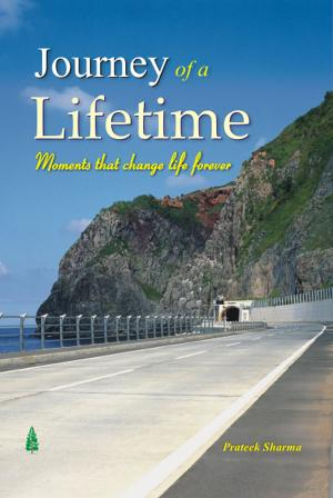 JOURNEY OF A LIFETIME - Read on ipad, iphone, smart phone and tablets