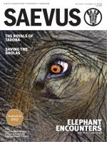 SAEVUS MARCH-MAY 2017