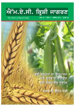 SEPTEMBER 2013 (Punjabi Edition)