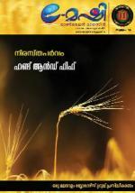 E - Mashi Online Magazine