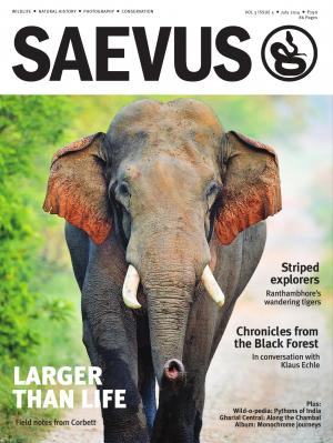 SAEVUS JULY 2014 - Read on ipad, iphone, smart phone and tablets.
