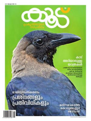 Koodu Magazine - Read on ipad, iphone, smart phone and tablets.