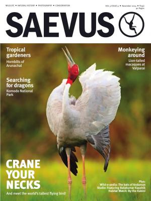 SAEVUS NOV 14 - Read on ipad, iphone, smart phone and tablets.