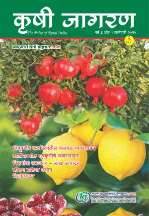 Marathi Magazine-January-2015