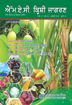 Punjabi Magazine-FEBRUARY 2015 - Read on ipad, iphone, smart phone and tablets