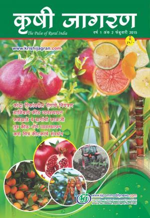 Marathi Magazine-2015