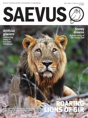 SAEVUS APRIL 2015 - Read on ipad, iphone, smart phone and tablets.