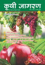 Marathi Magazine-March 2015