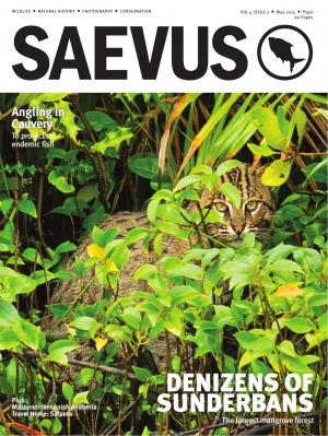 SAEVUS MAY 2015 - Read on ipad, iphone, smart phone and tablets.