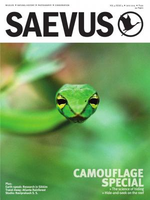 SAEVUS JUNE 2015 - Read on ipad, iphone, smart phone and tablets.