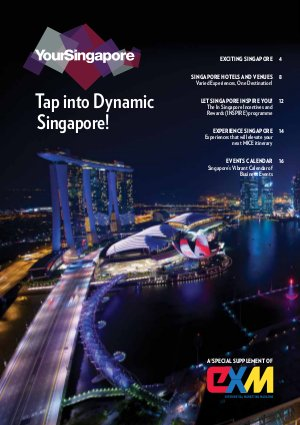 YouSingapore Supplement 2015