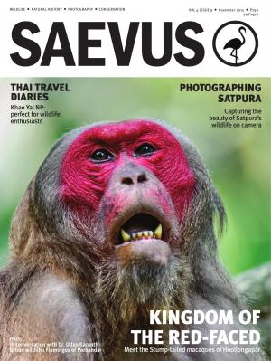SAEVUS NOVEMBER 2015 - Read on ipad, iphone, smart phone and tablets.