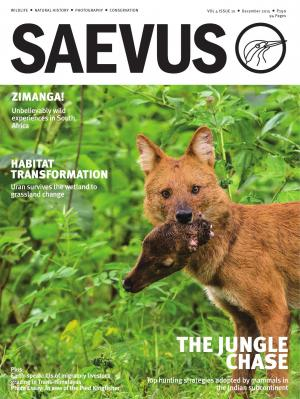 SAEVUS DECEMBER 2015 - Read on ipad, iphone, smart phone and tablets.