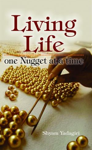 Living Life - One Nugget at a Time