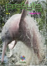 Protyle Magazine (Gujarati)
