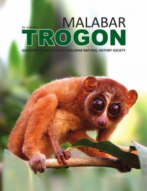 Malabar Trogon