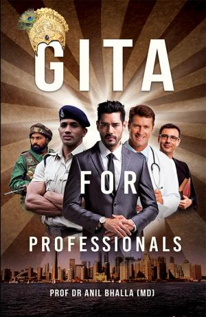Gita For Professionals