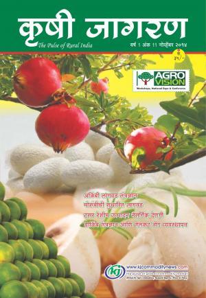 Marathi Magazine-November-2014