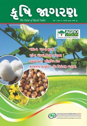 Gujarati Magazine-November-2014