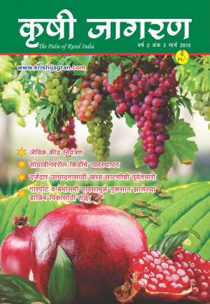 Marathi Magazine-March 2015